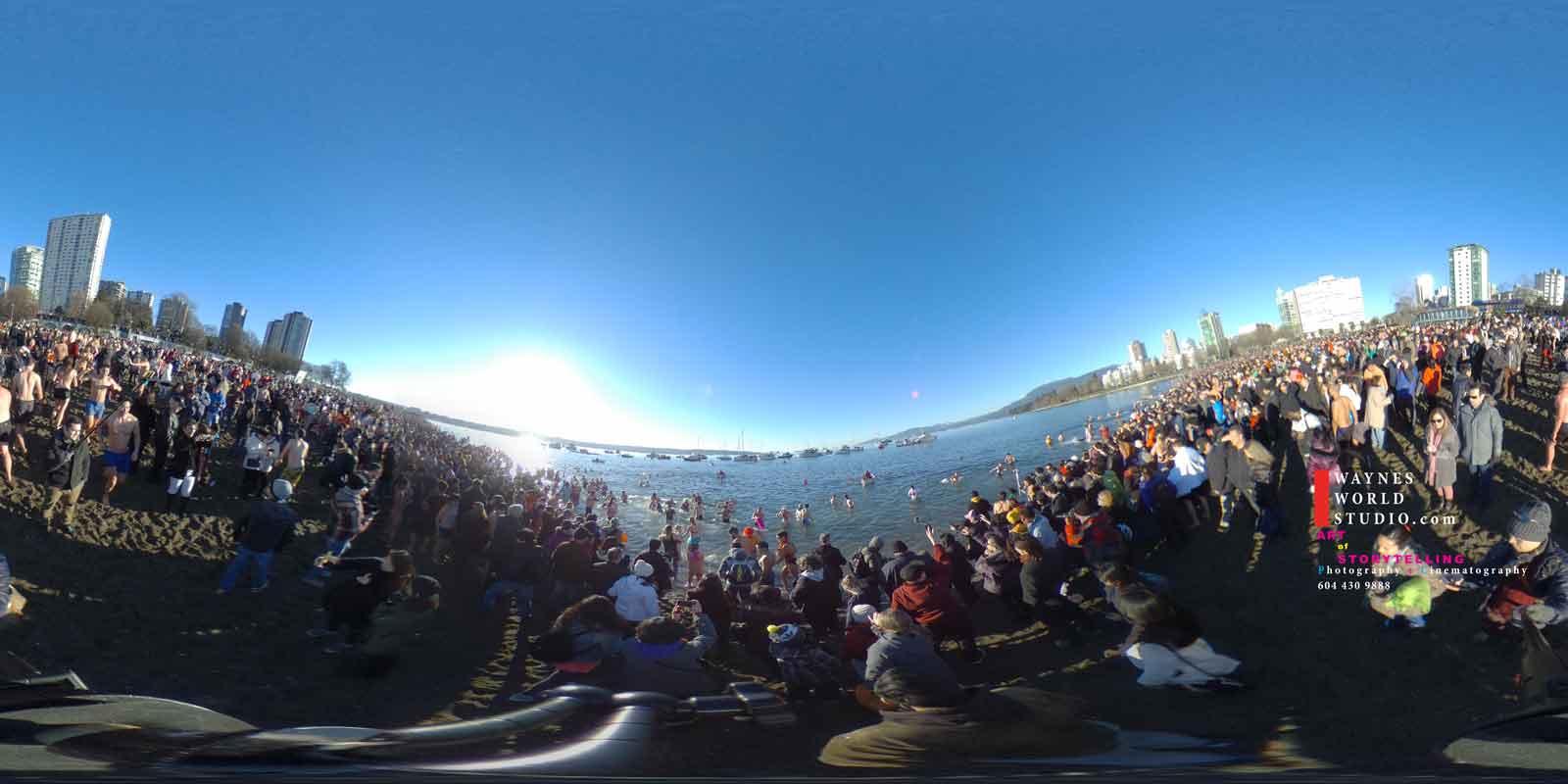 360 degree VR video polar bear swim