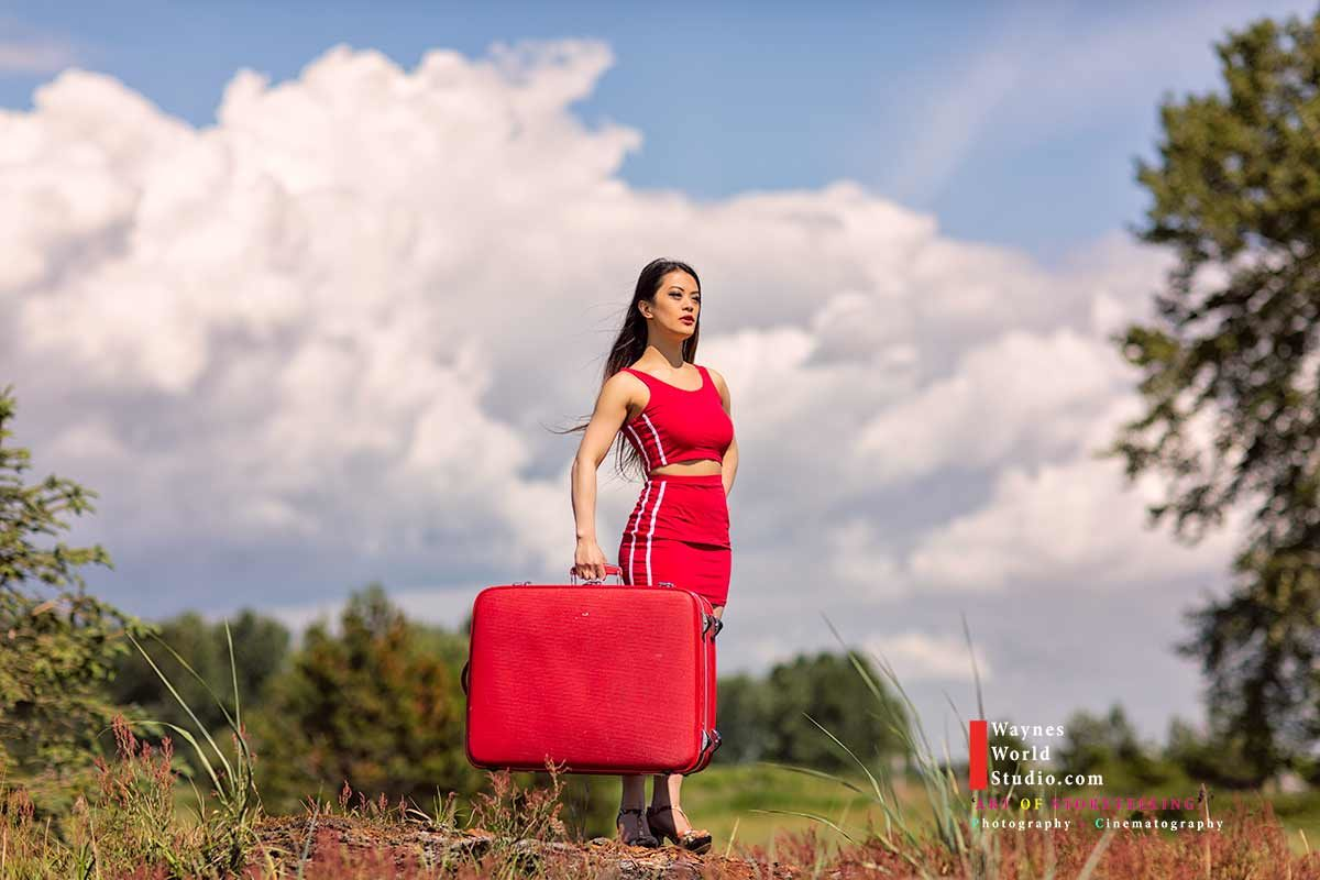 The Red Luggage Diary a True Story